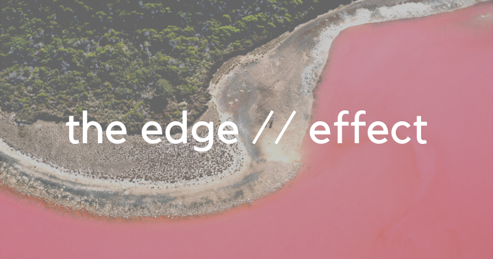 The Edge Effect: Driving Change From Where You Are